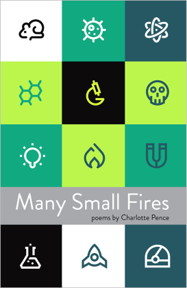 Many-Small-Fires-cover-final